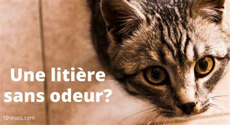enlever odeur urine de chat sur beton de conception de maison
