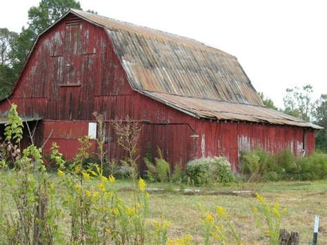 Why Are Barns Red?  Print Magazine