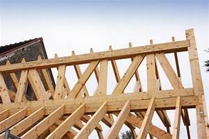 Statiker Kosten Hausbau : dachstuhl statik berechnen dachkonstruktion dc statik statik dachst hle aufma vor ort ~ Markanthonyermac.com Haus und Dekorationen