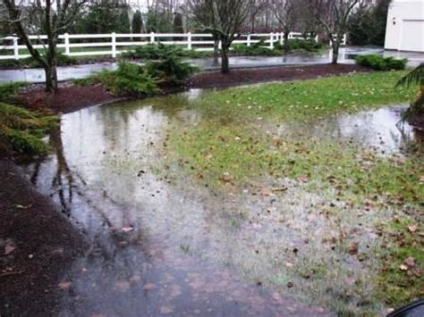 Lawn & Landscaping Tips  How Can I Fix Drainage Problems