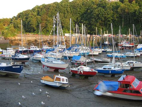 Boats And Harbors Online by Boats In Harbor Free Stock Photo Public Domain Pictures