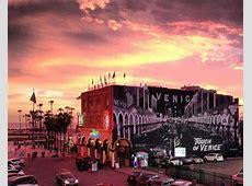 Travel Tips Travel to Venice Beach Samesun Backpackers