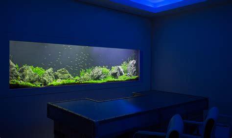 custom aquarium design bespoke designer fish tanks
