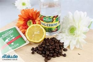 Geruch Im Kühlschrank Entfernen : schlechte ger che entfernen gute geruchsneutralisierer ~ Markanthonyermac.com Haus und Dekorationen