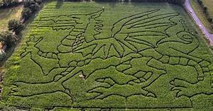 Look at this a-MAZE-ing dragon hidden in Gloucestershire ...