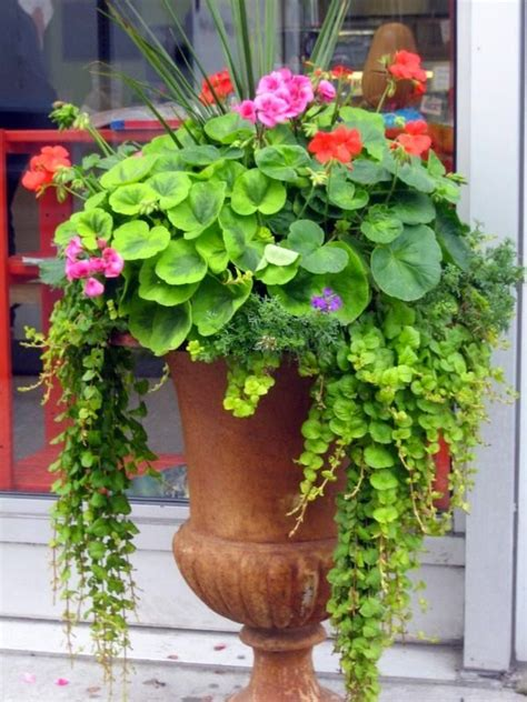 25 best ideas about garden urns on urn planters rusting of iron and container flowers