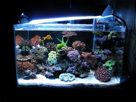 nano aquarium r 233 cifal eau de mer 58 litres complets
