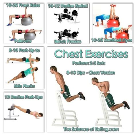 at home chest exercises 209 best images about useful reference on