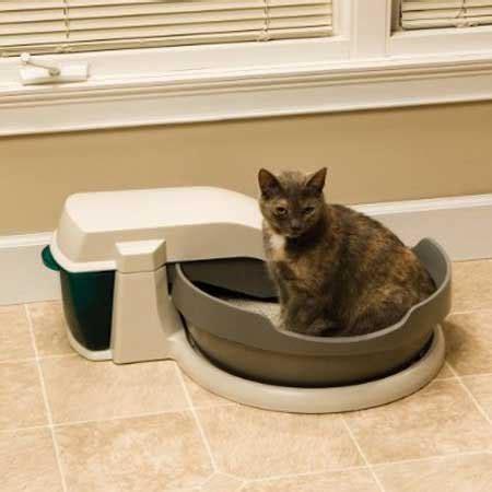 maison de toilette pour chats quot simply clean quot de petsafe