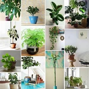 Feng Shui Wandfarben : feng shui wohnzimmer regeln raum und m beldesign inspiration ~ Markanthonyermac.com Haus und Dekorationen