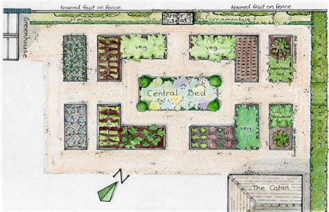 simple and easy small vegetable garden layout plans 4x8 with raised bed and privet hedge plants