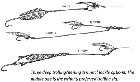 trout trolling tips and tricks the fishing website