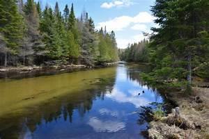 Scenics from Michigan's Lower Peninsula | Upper Peninsula ...