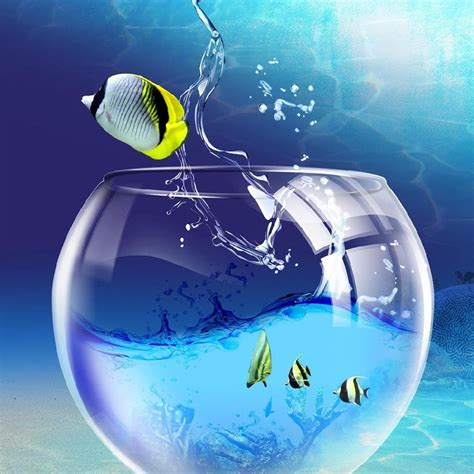 Ipad Wallpaper 3d Fish Escapes From The Aquarium