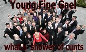 Fine Gael political party in poll - public opinion online
