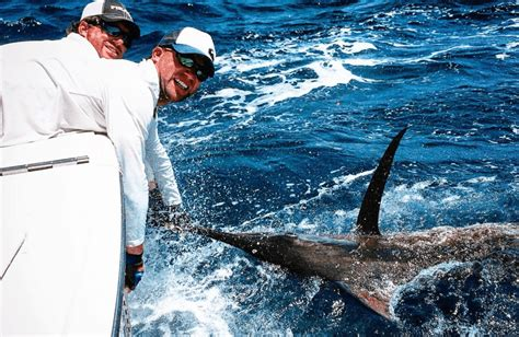 Charter Boat Fishing Virginia Beach by Best Things To Do In Virginia Beach Hang Like A Local