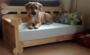 Hundeplanschbecken Selber Bauen : die besten 25 hunde bett ideen auf pinterest hundebett hund im bett und hundebett aus holz ~ Markanthonyermac.com Haus und Dekorationen