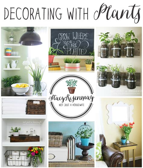 How To Decorate With Plants  Stacy Risenmay