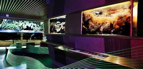 sur terre dans les airs sous la mer au mus 233 um aquarium de nancy m 244 m
