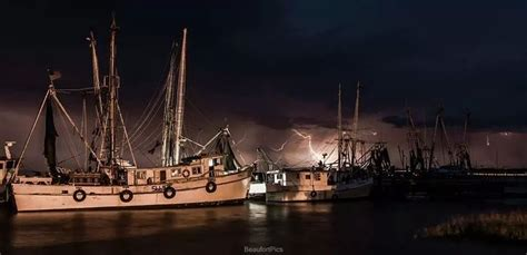 Shrimp Boat Night by 17 Best Images About My Favorite Job On Pinterest