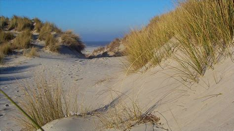 Prive Boot Ameland by Experience Terschelling Island Hopping On The Wadden