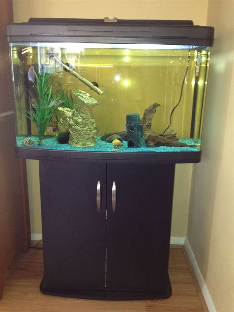 fishbox 120 litre aquarium deal kent pets4homes