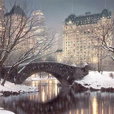 Winter in Central ParkPretty CityPinterest