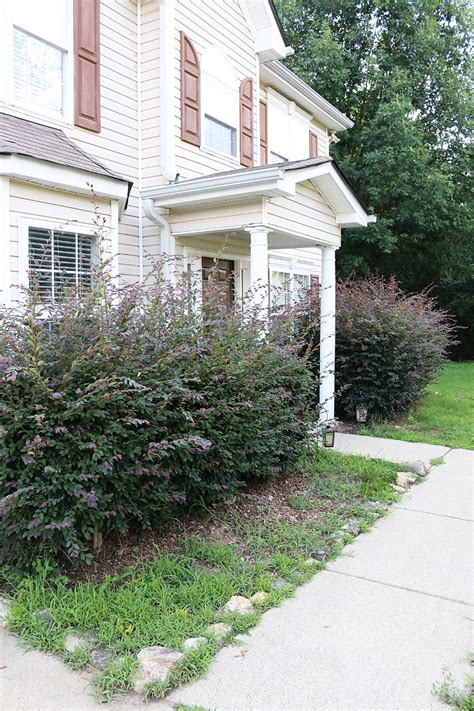 A Curb Appeal Makeover  Bower Power