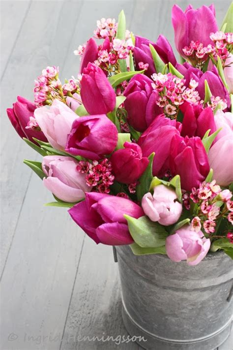 Of Spring and Summer: FLOWERS by ingrid & titti   Tulips