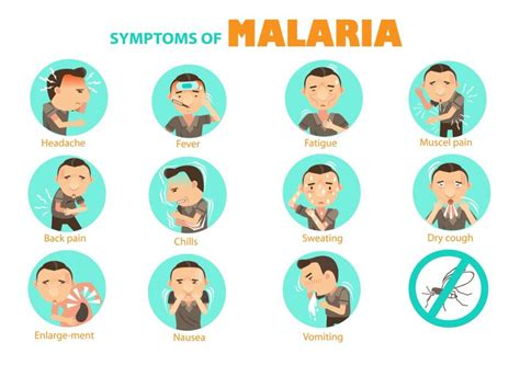 What Are The Symptoms Of Malaria?  Consortiumha. Tingling Signs. Major Signs. Blue Circle Signs. Industrial Signs Of Stroke. Childhood Diabetes Signs Of Stroke. Arrow Signs. Nhs Signs Of Stroke. Headlights Signs