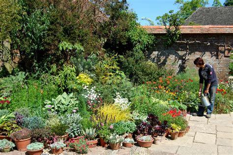 jardin en pot arrosage jardins de pots