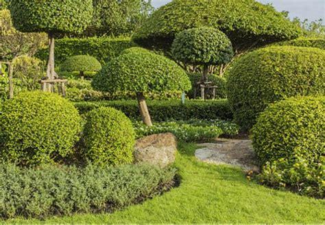 Japanischen Garten Anlegen, Pflegen Und Gestalten Mit Obi