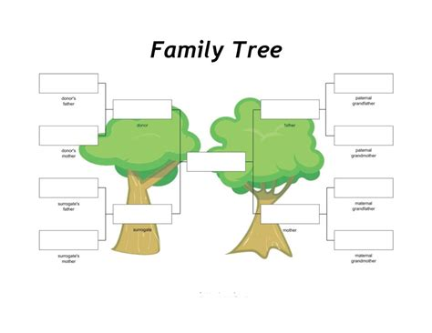 50+ Free Family Tree Templates (word, Excel, Pdf. Registered Nurse Skills List Template. Sign In Sign Out Sheet Template Excel. Daily Expenses Sheet In Excel Format Free Download. Construction Timeline Template 224053. Letterheads For Business. Reflective Essay On English Class Template. Raci Chart Templates Excel Template. Feasibility Study Template Free