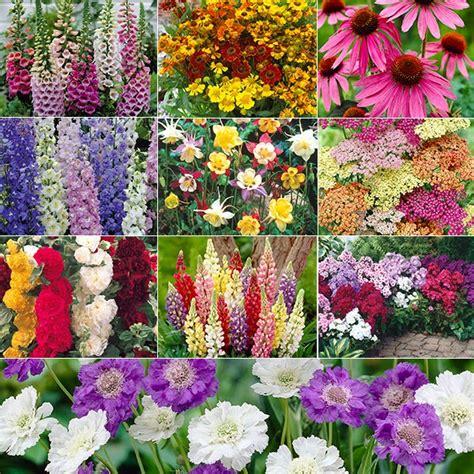 Your Minnesota Garden A Minnesota Cottage Garden