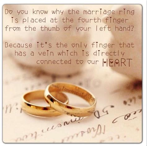 Wedding Ring Symbolism Quotes Quotesgram. Burns Wedding Rings. Raw Crystal Wedding Rings. Glenn Spiro Rings. Military Wedding Wedding Rings. Circular Rings. 8th Grade Rings. Small Square Engagement Rings. Eng Engagement Rings