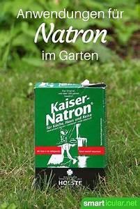Holzasche Im Garten Verwenden : 6 clevere anwendungen f r natron im garten natron puder und haushalte ~ Markanthonyermac.com Haus und Dekorationen