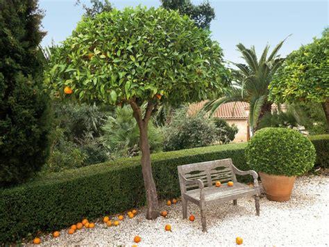 les jardins protecteurs de alexandre risser galerie photos d article 7 9