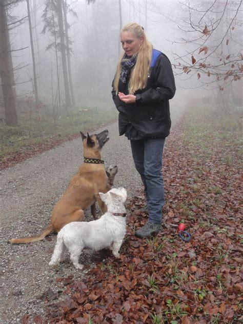 Sitemap  Braverhunds Webseite