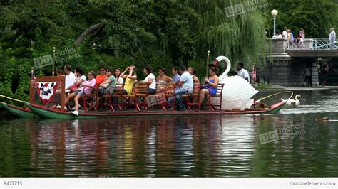 Swan Boats Videos by Tourists And Visitors Ride Swan Boats At Boston Public