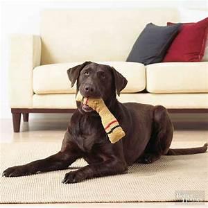 Fido Pet Shop : knit a toy fido will love better homes gardens ~ Markanthonyermac.com Haus und Dekorationen