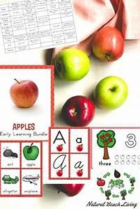 The Best Kindergarten and Preschool Apple Theme Activities ...