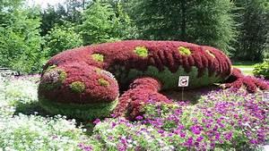 Garten Blumen Pflanzen : blumen garten pflanzen salamander download der kostenlosen fotos ~ Markanthonyermac.com Haus und Dekorationen