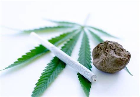 imprimer du cannabis pour soulager la scl 233 en plaques infos vivre fm la radio du handicap