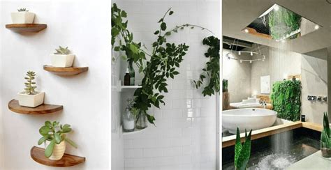 Create Your Own Stylish Zen Bathroom At Home
