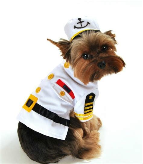 Dog Boat Captain by Costumes For Dogs Small And Big Halloween Dog Costumes