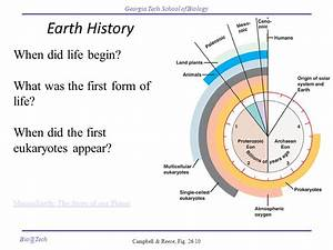 Earth History When did life begin? What was the first form ...