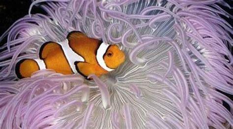 parc aquarium les naiades ottrott top tips before you go tripadvisor
