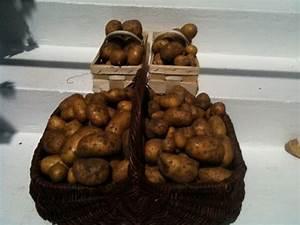 Kartoffeln Und Zwiebeln Lagern : tipps rund um die kartoffel ~ Markanthonyermac.com Haus und Dekorationen