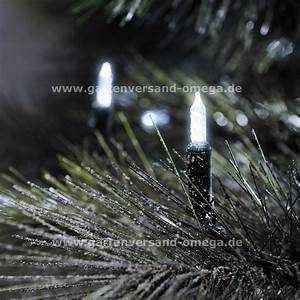Winterpflanzen Für Den Garten : led minilichterkette f r den garten wetterfeste led lichterkette energiesparende lichterkette ~ Whattoseeinmadrid.com Haus und Dekorationen