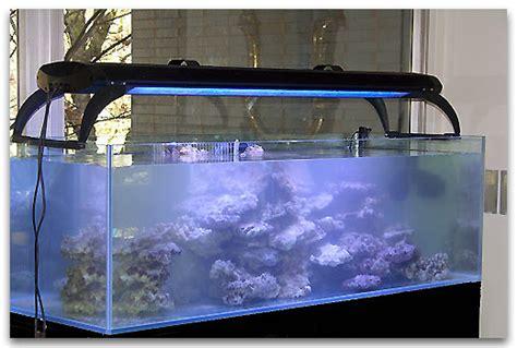 construire un aquarium eau de mer